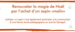 Sapins - copie.indd